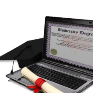 professional-forex-trading-degree